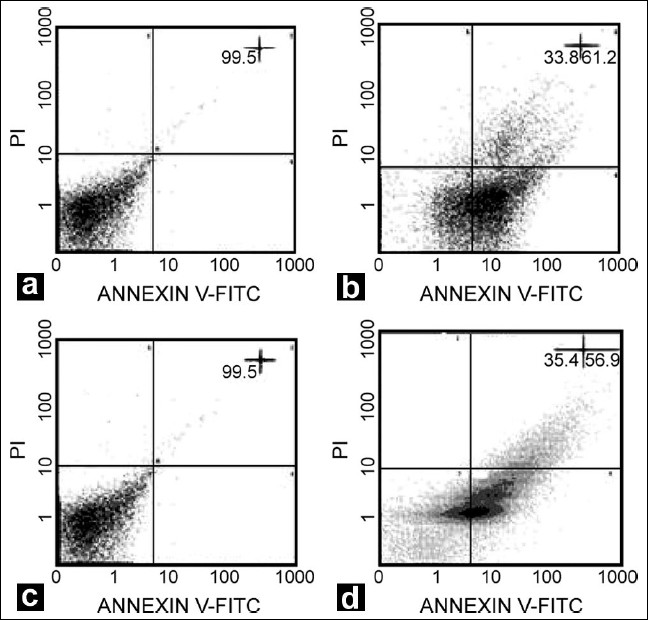 Figure 3: Flow cytometric analysis of cell death mode induced by RGDFasL with ANNEXIN V FITC/PI. (a) untreated GH3 cells; (b) treated GH3 cells; (c) untreated AtT20 cells; (d) treated AtT20 cells