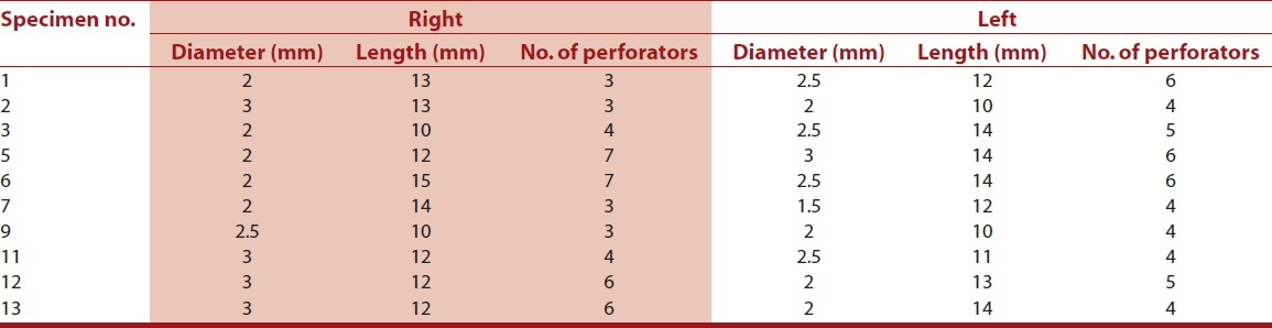Table 2: Disproportionately developed A1 segment: Diameter, length, and number of perforators