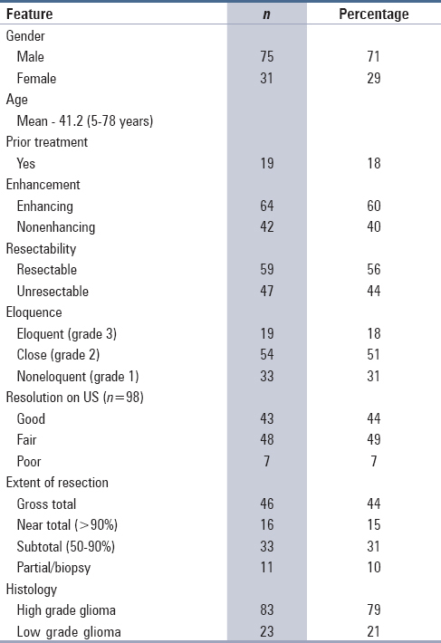 Table 1: Clinical and demographic characteristics of the cohort (<i>n</i> = 106)