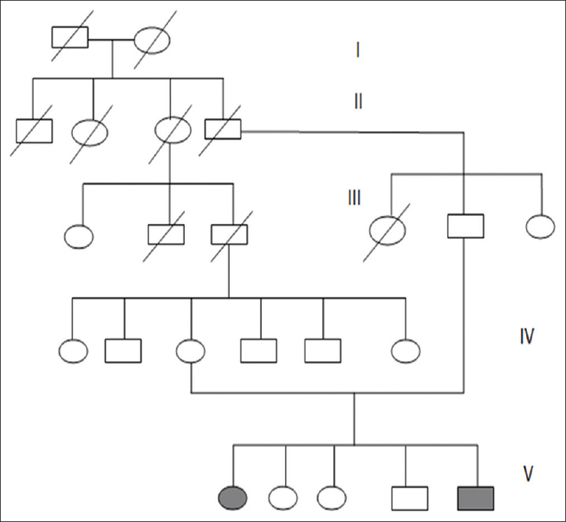 Figure 5: Pedigree chart showing the patients affected with PKAN